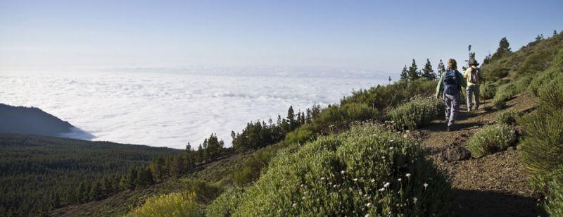 14-alto-guamaso-parque-nacional-teide-fc